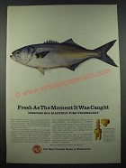 1965 RCA Electronic Components and Devices Ad - Fresh as Moment Caught
