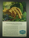 1960 Union Carbide Ad - Reaching Into a Lost World