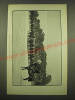 1902 Magazine Print of a Photograph by Henry Hoyt Moore - Cavalry Drill