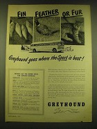 1949 Greyhound Bus Ad - Fin feather or fur Greyhound goes where the sport is