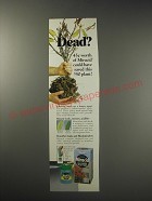 1991 Miracle-Gro Miracid Ad - Dead?