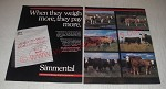 1990 Simmental Cattle Ad - When they weight more, they pay more