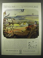 1955 Shell Oil Ad - Shell Nature Studies James Fisher No. 9 September Flyway
