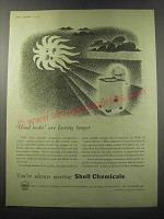 1955 Shell Chemicals Ad - Good looks are lasting longer