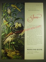 1963 Midland Bank Ad - Cock Ruffs and Bearded Tit - John Leigh Pemberton
