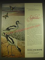 1963 Midland Bank Ad - Avocet and Swallow Tail Butterfly - John Leigh Pemberton