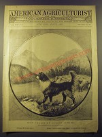1887 American Agriculturist March Cover Ad - Our Collie on Guard