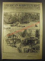 1887 American Agriculturist April Cover Only - My winter in Florida