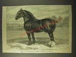 1887 Illustration of The Clydesdale Stallion Gildeory