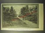 1887 Illustration of Stealing a Bicycle Ride Through Central Park