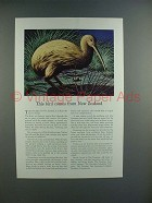 1942 Travelers Insurance Ad w/ Kiwi Bird